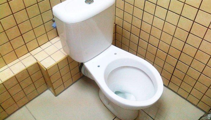 Унитаз с каким типом подводки воды стоит выбрать - боковым или нижним?